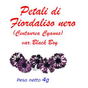 Petali di fiordaliso nero