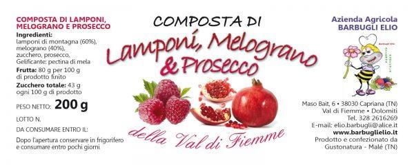 Composta_lamponi_melograno_prosecco_etichetta